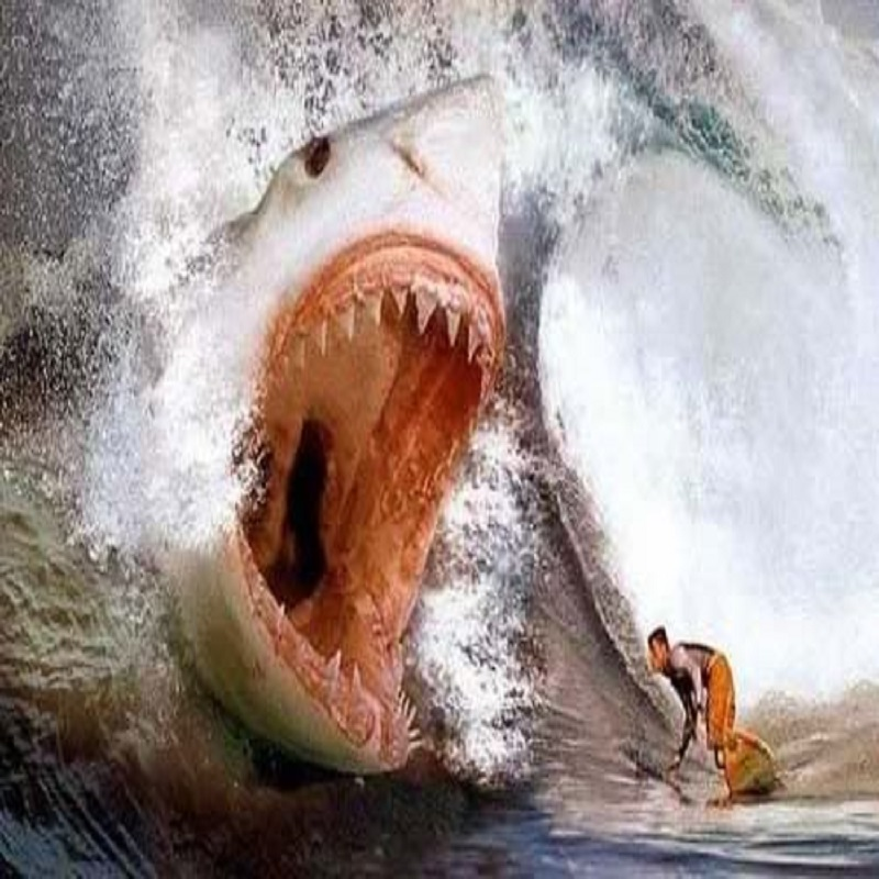 SharkAttack